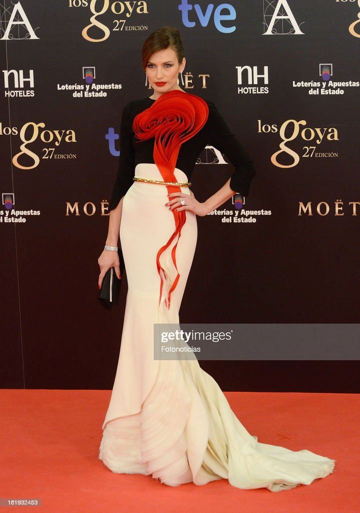 Nieves Alvarez attends Goya Cinema Awards 2013 at Centro de Congresos Principe Felipe on February 17, 2013 in Madrid, Spain.