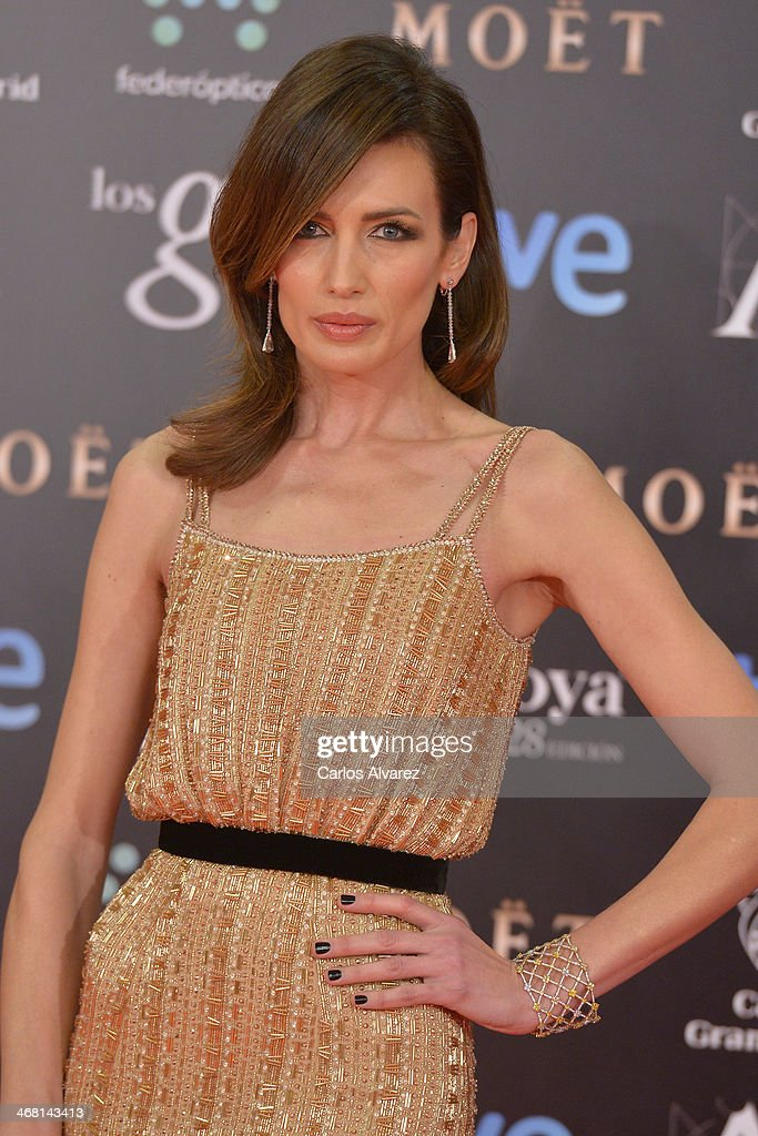 Nieves Alvarez attends Goya Cinema Awards 2014 at Centro de Congresos Principe Felipe on February 9, 2014 in Madrid, Spain.