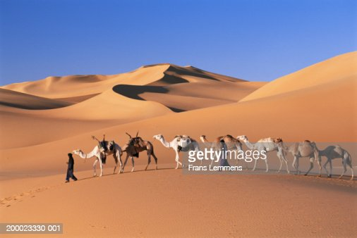 Niger, Sahara Desert, Tuareg tribespeople leading camel caravan