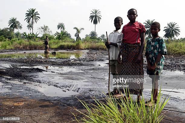 Nigeria Bomu Kpor Ogoni Area ecological destruction because petroleum