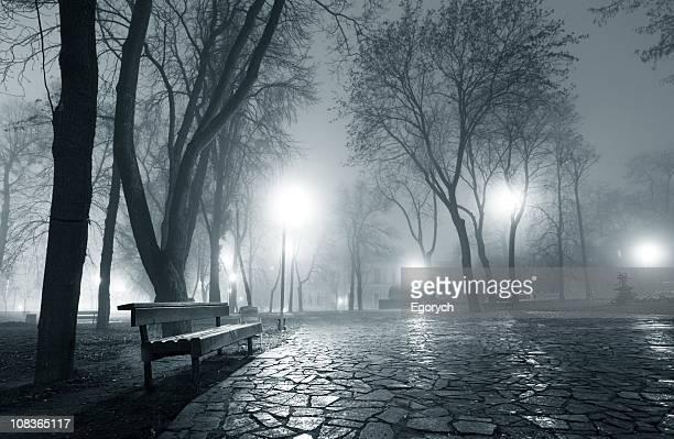 Parc de la ville de nuit