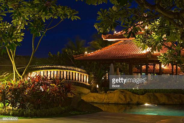 Night landscape with magnolias, little bridge, pool, pagoda