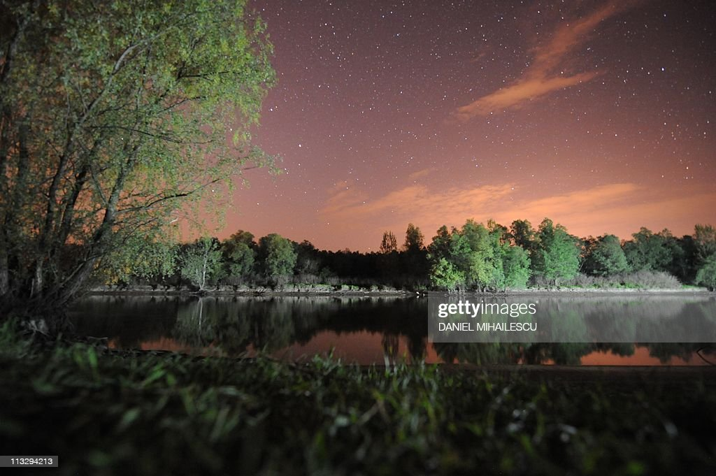 A night shot of a forest in on a Danube's Delta canal next to Tulcea city (290km east from Bucharest) April 30, 2011. Danube Delta is the second largest and best preserved of Europe's deltas: 2,200 square miles of rivers, canals, marshes, tree-fringed lakes and reed islands. Some 15,000 people inhabit the Delta area, living in 28 villages and one city (Sulina).
