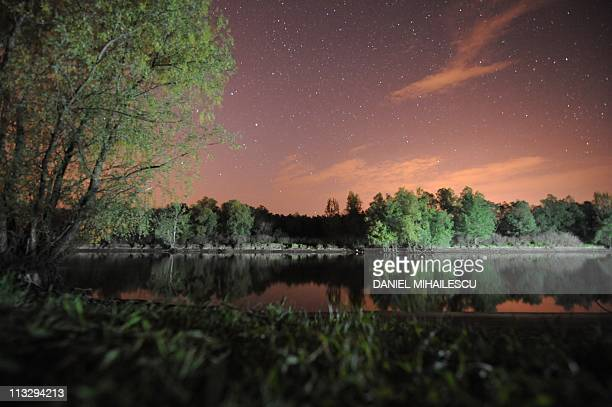 A night shot of a forest in on a Danube's Delta canal next to Tulcea city April 30 2011 Danube Delta is the second largest and best preserved of...