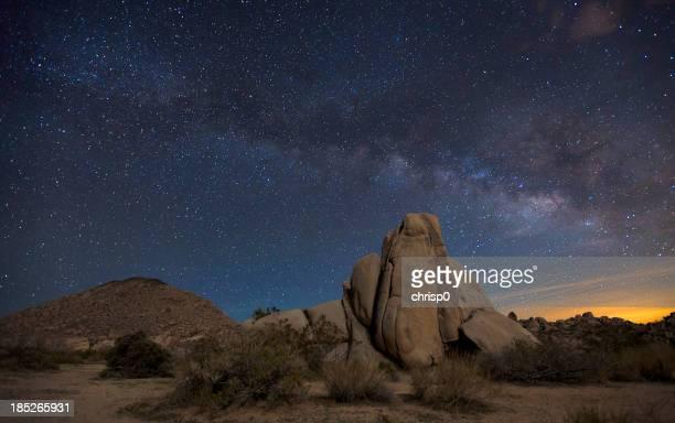 Night Sky at Joshua Tree National Park