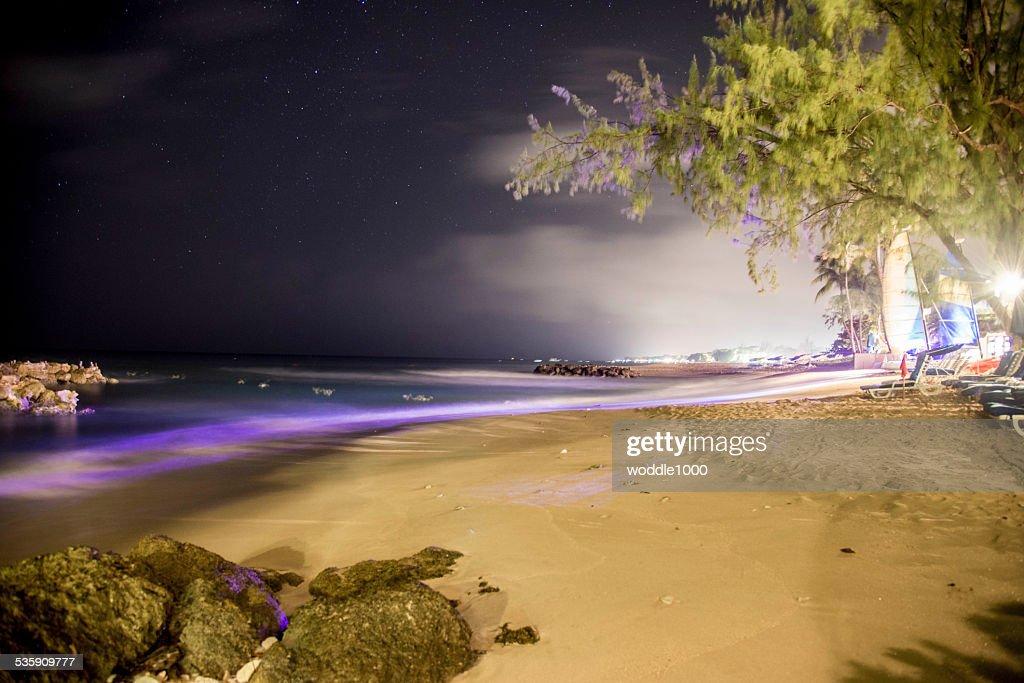 Noite céu na praia : Foto de stock