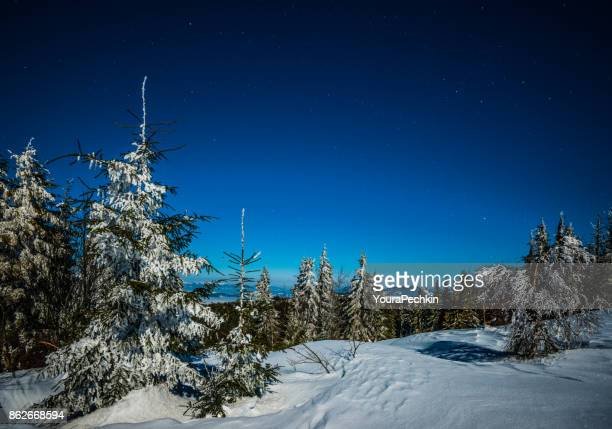 Night stars in the snowy mountains