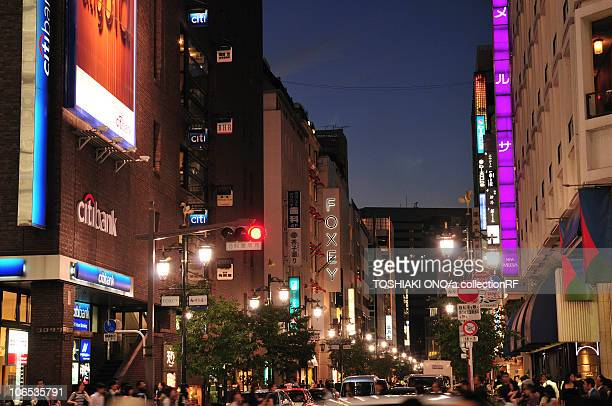 Night View of Downtown Tokyo
