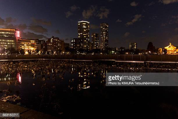 Night view of Shinobazu Pond, Ueno, Tokyo