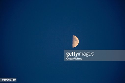nightly sky with large moon : Stock Photo