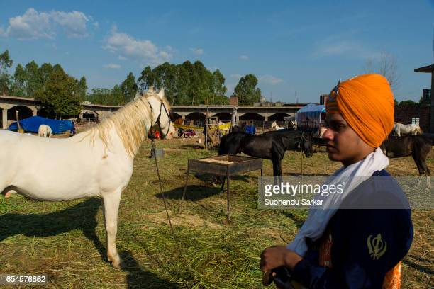 Nihang boy is seen among horses at a temporary camp during Hola Mohalla festival Hola Mohalla is a threeday festival started by the tenth Sikh Guru...