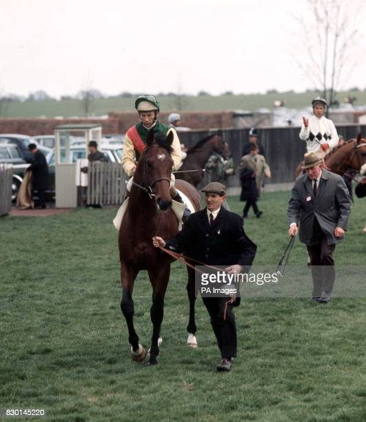 Nijinsky with Lester Piggott before his victory in the 2000 Guineas Stakes at at Newmarket