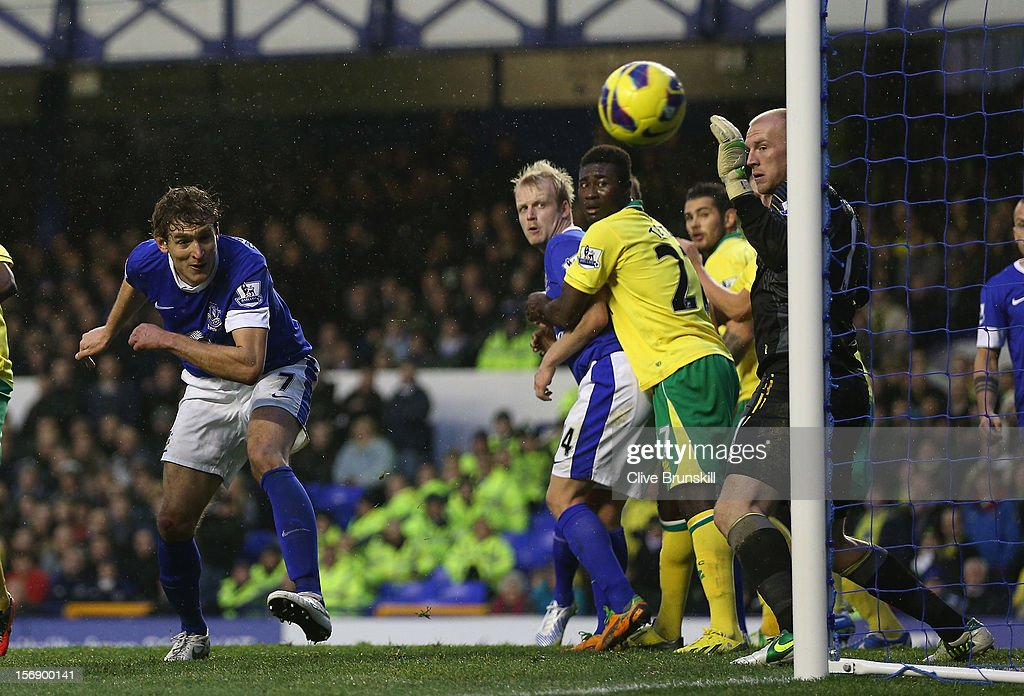 Nikiica Jelavic of Everton watches as his header go just wide of the Norwich goal during the Barclays Premier League match between Everton and Norwich City at Goodison Park on November 24, 2012 in Liverpool, England.