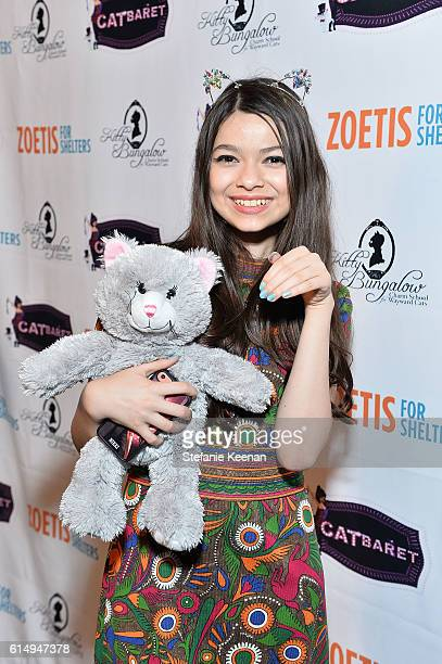 Nikki Hahn attends 2016 Catbaret Gala A Starstudded Musical Extravaganza To Benefit Kitty Bungalow For Wayward Cats at Avalon on October 15 2016 in...