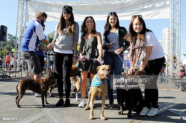 Nikki Phillips and Rose Kelly and Lyndsey Rodrigues and Lizzy Lovett attends the RSPCA Million Paws Walk at Sydney Olympic Park on May 16 2010 in...