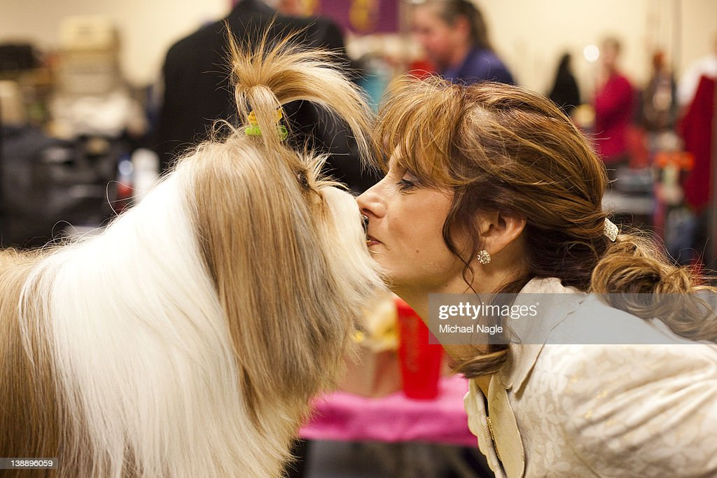 Nikkie Kinzigner performs a trick with Tibetan Terrier Reese, winner of an award of merit, backstage at the Westminster Kennel Club Dog Show on February 13, 2012 in New York City. The Westminster Kennel Club Dog Show first held in 1877, is the second-longest continuously held sporting event in the U.S., second only to the Kentucky Derby.