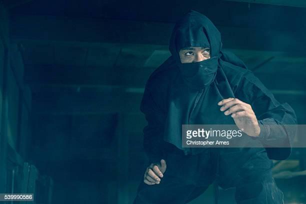Ninja in the Shadows