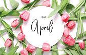 """nInscription Hello April. Tulip flower. Spring background."