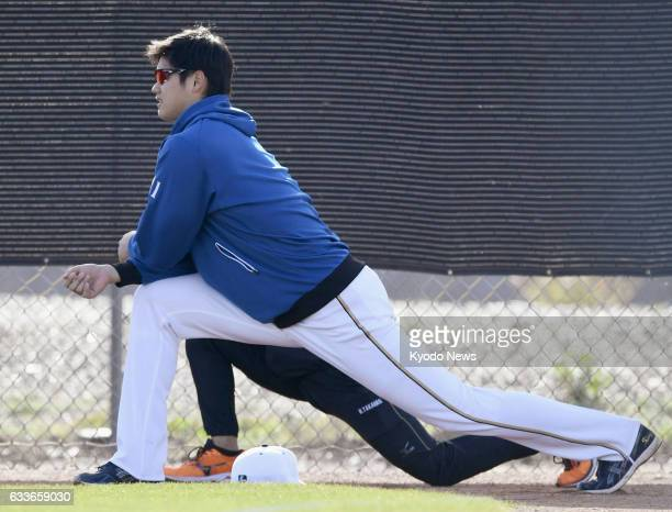 Nippon Ham Fighters pitcherdesignated hitter Shohei Otani stretches at the team's training camp in Peoria Arizona on Feb 2 2017 It was widely...