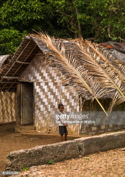 NiVanuatu boy in front of a traditional house made with palm leaves Shefa Province Efate island Vanuatu on August 24 2007 in Efate Island Vanuatu