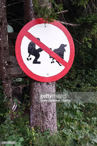 No Dog Feces Signboard On Tree