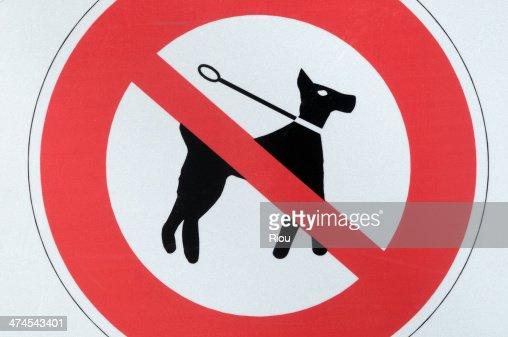 no dog sign : Stock Photo