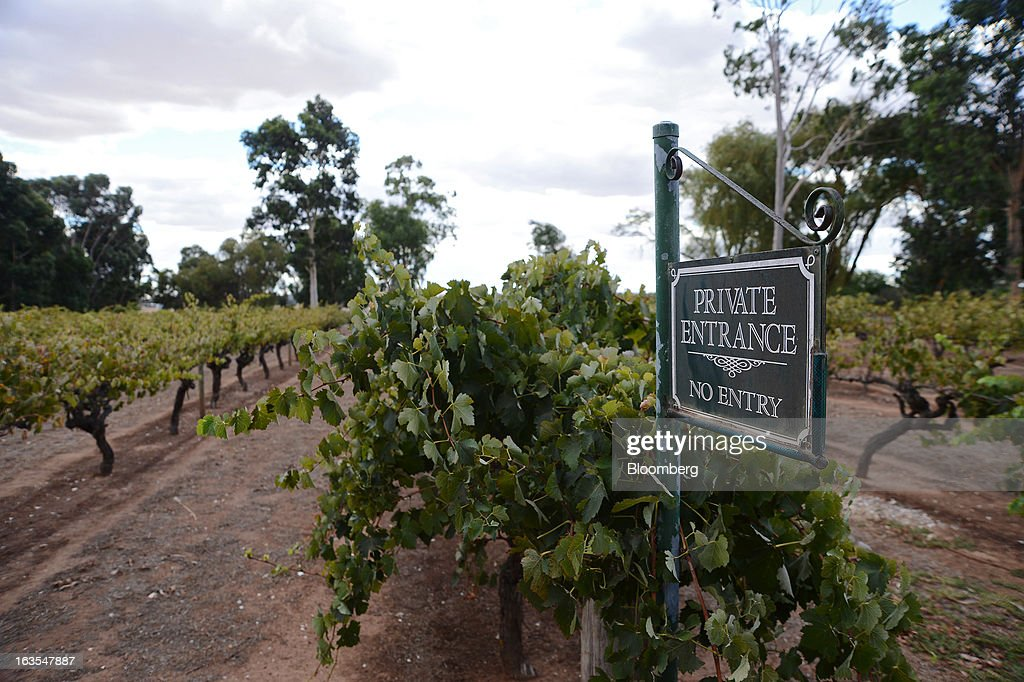 A 'No Entry' sign stands next to a vineyard at Treasury Wine Estates Ltd.'s Wolf Blass cellar door in the Barossa Valley, Australia, on Monday, March 4, 2013. Treasury, Australia's largest winemaker, is counting on luxury and high-end products to boost earnings as the strength of the Australian dollar makes lower-priced export labels unprofitable and domestic liquor chains push for cheaper products under their own labels. Photographer: Carla Gottgens/Bloomberg via Getty Images