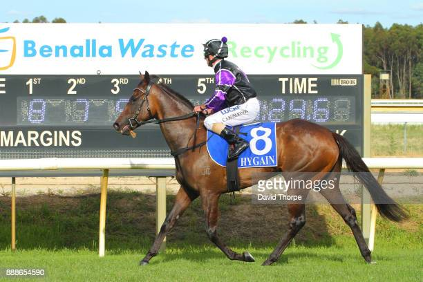 No Intention ridden by Craig Robertson returns to the mounting yard after winning the Royal Hotel FM 0 58 Handicap on December 09 2017 in Benalla...