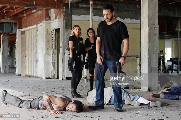 GRACELAND 'No Old Tigers' Episode 313 Pictured Rhys Coiro as Ari Serinda Swan as Paige Arkin Vanessa Ferlito as Charlie DeMarco Daniel Sunjata as...