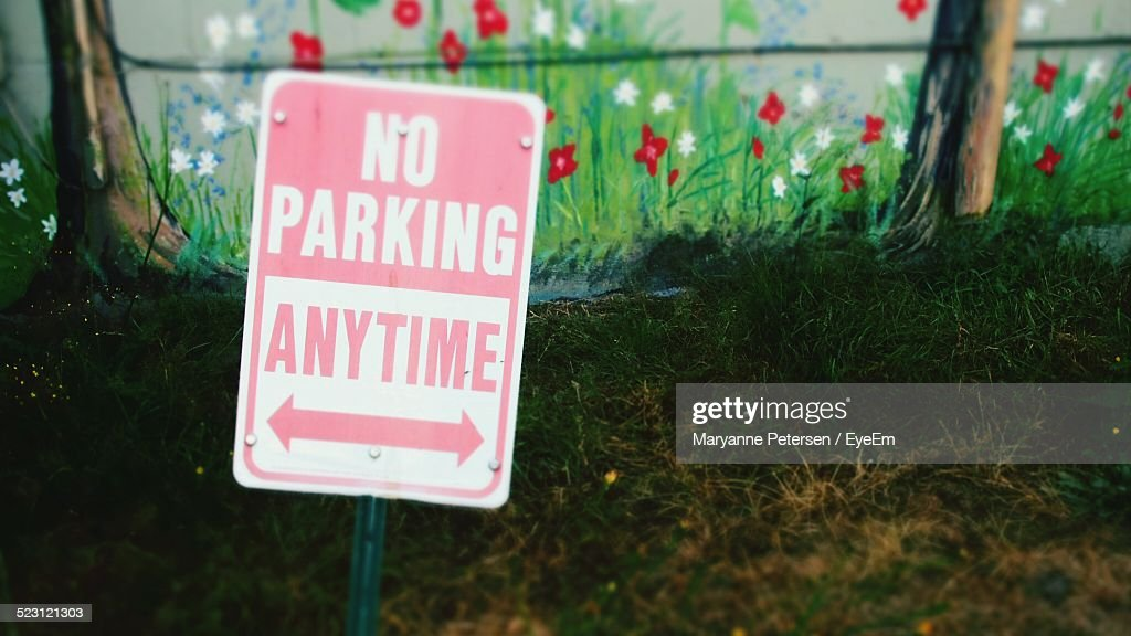 No Parking Sign In Grassy Field