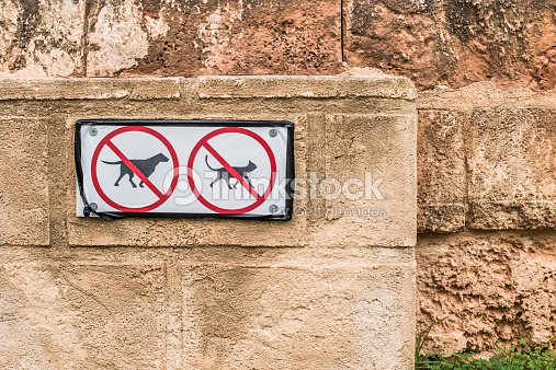 no pets allowed signs on old textured wall stock photo thinkstock