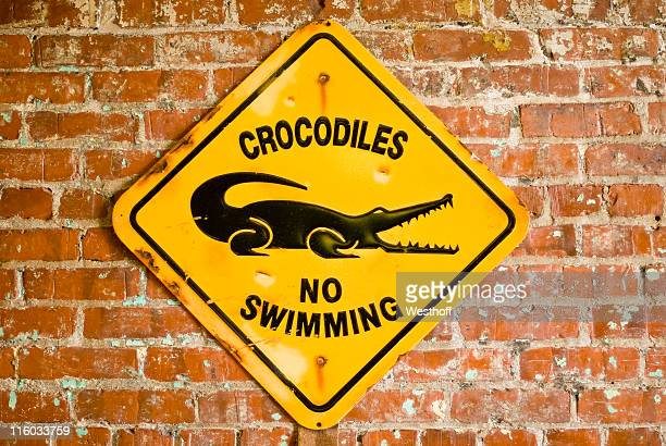 Pas de piscine
