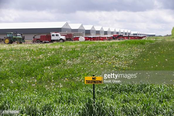 No trespassing signs are posted on the edge of a field at a farm operated by Daybreak Foods which has been designated 'bio security area' on May 17...