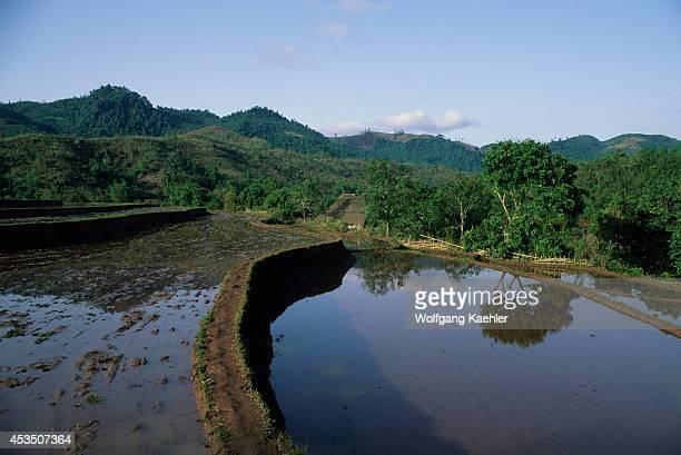 No Vietnam Near Hoa Binh Giang Mo Village Muong Hill Tribe Rice Fields
