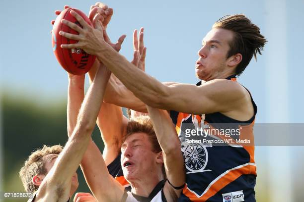 Noah Balta of the Cannons takes a mark during the round four TAC Cup match between the Northern Knights and the Murray Bushrangers at RAMS Arena on...