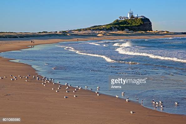 Nobby's Lighthouse and seagulls on the beach at Newcastle New South Wales Australia