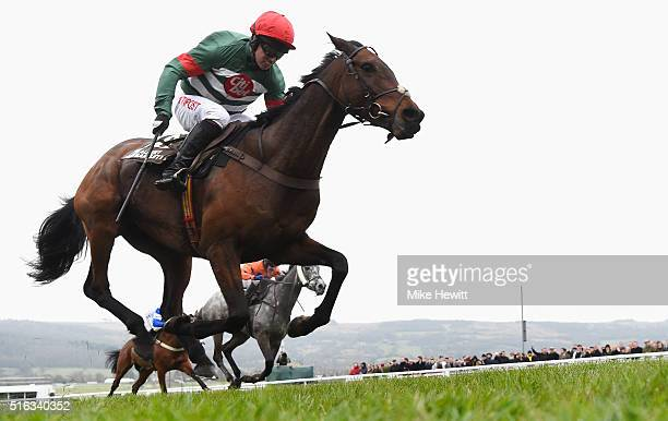 Noel Fehily on Unowhatimeanharry runs on the way to winning the Albert Bartlett Novices' Hurdle as part of the Cheltenham Festival at Cheltenham...