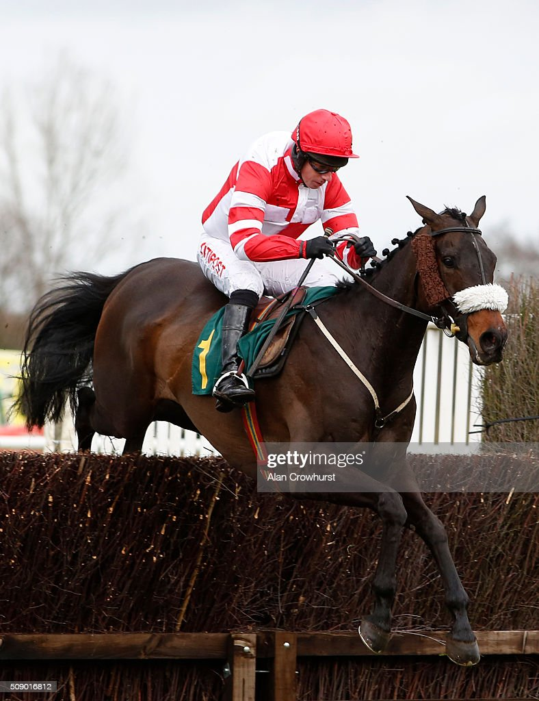 <a gi-track='captionPersonalityLinkClicked' href=/galleries/search?phrase=Noel+Fehily&family=editorial&specificpeople=241420 ng-click='$event.stopPropagation()'>Noel Fehily</a> riding Halo Moon clear the last to win The Racing Welfare Handicap Steeple Chase at Fakenham racecourse on February 08, 2016 in Fakenham, England.
