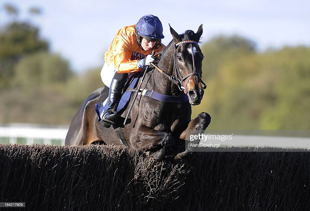 Noel Fehily riding Hildisvini clear the last to winThe SWL Ltd Electrical Contractors Beginners' Steeple Chase at Huntingdon racecourse on October 16, 2012 in Huntingdon, England.