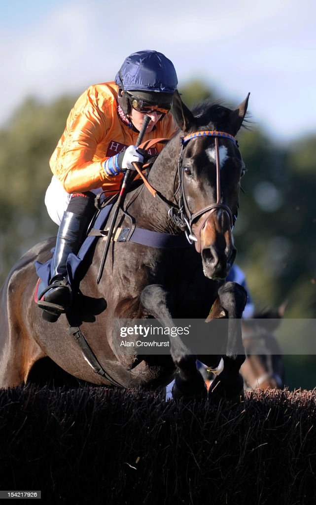 Noel Fehily riding Hildisvini on their way to winning The SWL Ltd Electrical Contractors Beginners' Steeple Chase at Huntingdon racecourse on October 16, 2012 in Huntingdon, England.
