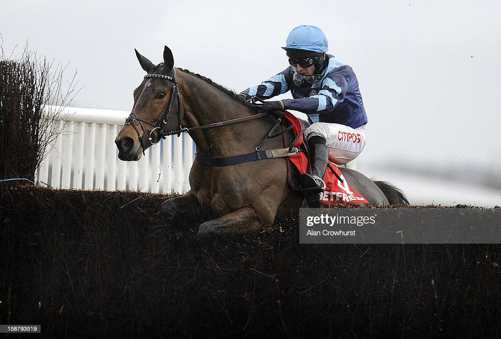 Noel Fehily riding Pete The Feat clear the last to win The Betfred Mandarin Handicap Steeple Chase at Newbury racecourse on December 29, 2012 in Newbury, England.