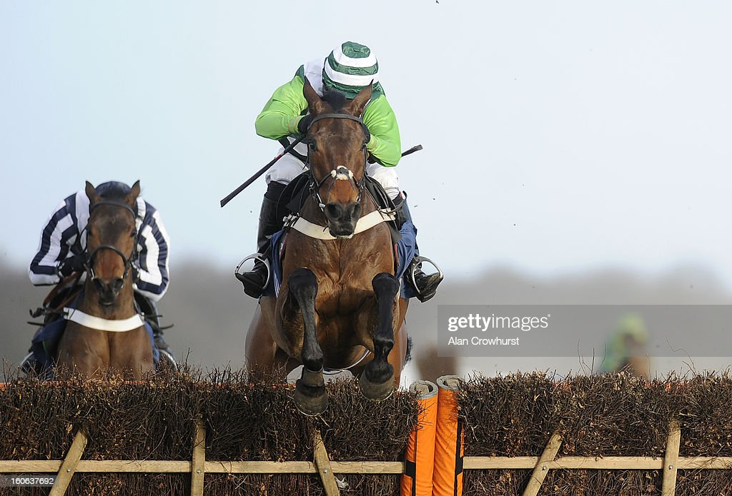 <a gi-track='captionPersonalityLinkClicked' href=/galleries/search?phrase=Noel+Fehily&family=editorial&specificpeople=241420 ng-click='$event.stopPropagation()'>Noel Fehily</a> riding Rock On Ruby clear the last to win The 32Red Hurdle Race at Doncaster racecourse on February 04, 2013 in Doncaster, England.