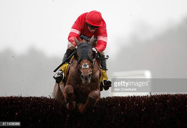 Noel Fehily riding Silviniaco Conti clear the last to win The Betfair Ascot Steeple Chase at Ascot racecourse on February 20 2016 in Ascot England