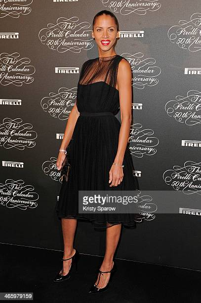 Noemie Lenoir attends the 'Pirelli 50th Anniversary Party' at Palais De Tokyo on January 30 2014 in Paris France