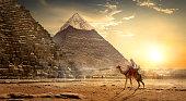 Nomad on camel near pyramids in egyptian desert