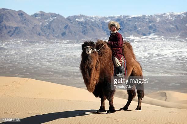 Nomadic camel herder on sand dune in Gobi desert