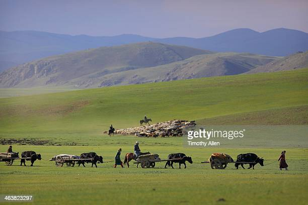Hangayn Nuruu Mountains Stock Photos and Pictures | Getty ...