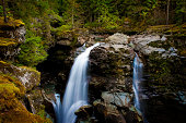 Located in the Mt. Baker National Forest, Washington State. The Nooksack River flows through a Pacific Northwest rain forest environment.