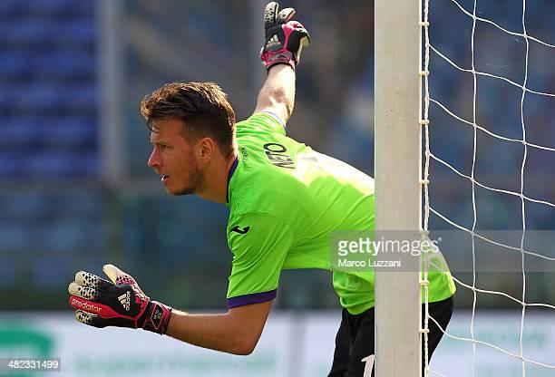 Norberto Murara Neto of ACF Fiorentina directs his defense during the Serie A match between UC Sampdoria and ACF Fiorentina at Stadio Luigi Ferraris...