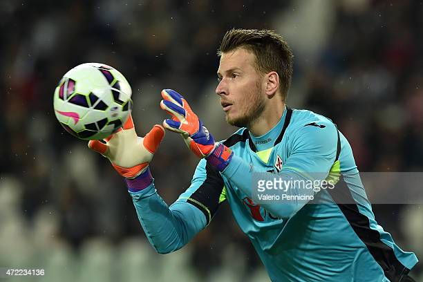 Norberto Murara Neto of ACF Fiorentina in action during the Serie A match between Juventus FC and ACF Fiorentina at Juventus Arena on April 29 2015...